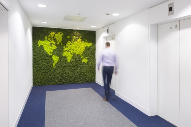 moss plant wall office design