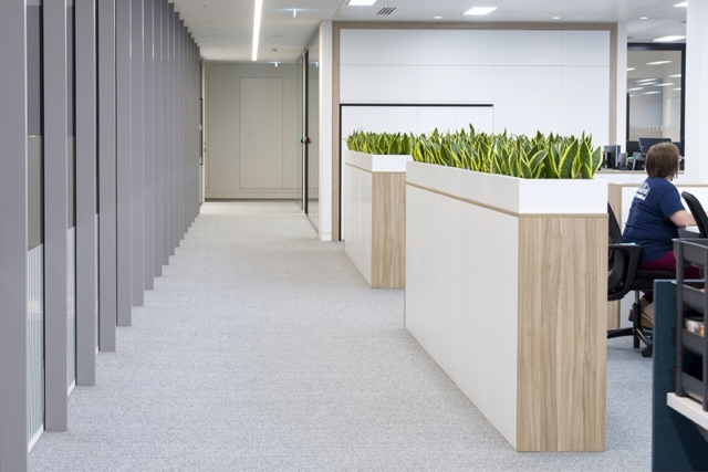 office furniture for plants