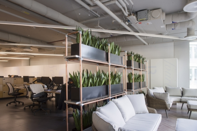 office planting racks