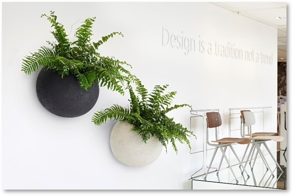 plant design for office
